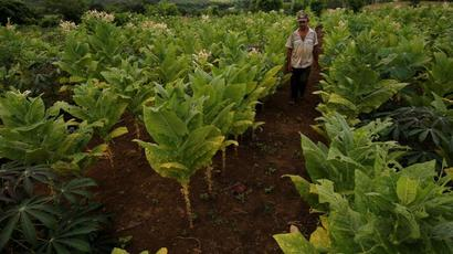 Committed to doubling farmers#39; income by 2022: Goa Governor