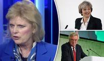 'Unrealistic & fanciful'  Anna Soubry talks down PM's chance of securing 'great' EU deal