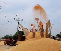 Govt to invest Rs 50 bn in Food Corporation of India in 2 years: Parl panel