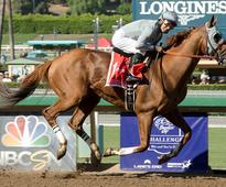 California Chrome Awesome Yet Again
