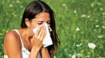 For those prone to allergy, January a tough m...