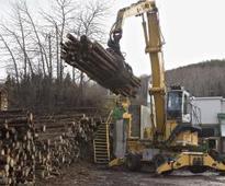 U.S. vs. Canada: Softwood lumber hostilities resume