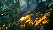 Uttarakhand loses 1,900 hectares of forests to fire; role of timber mafia being investigated