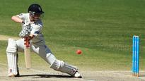 Nic Maddinson shows true grit as he helps steer NSW Blues to draw in Sheffield Shield clash with Western Australia