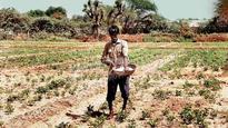 Maha loan waiver potential disaster: Sudhir Mungantiwar