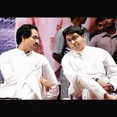 Ex-Shiv Sainiks to relaunch campaign for Raj-Uddhav Thackeray reunion