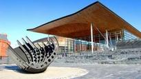 Senedd equality form criticised for no non-white Welsh option