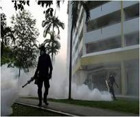 Zika Cases In Singapore Surge to 82