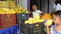 Mangoes from farm to fridge at the annual jackfruit mela