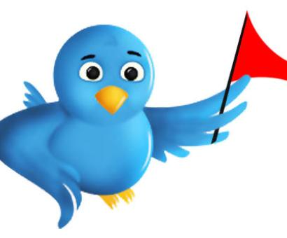 IT ministry asks Twitter to reinforce security