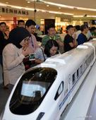 China Denies Indonesian Railway Project Halted: FM