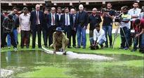 Chinnaswamy Stadium unveils state-of-the-art drainage system