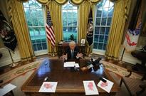 Trump's first year in office