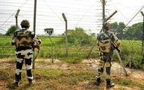 Army apprehends Pakistani national on LoC