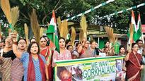 Darjeeling protests: HC tells Centre to send more troops