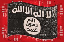 (Christian Science Monitor) Kosovar hacker pleads guilty in US court to aiding Islamic State