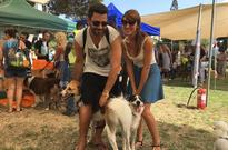 Why Tel Aviv Is So Crazy About Dogs