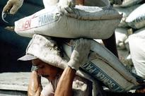 NGT notice to Centre, Punjab on Ambuja Cement plant expansion