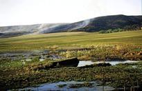 Mpumalanga wetlands under threat from mining