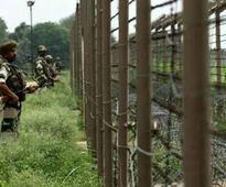 Pak national nabbed from Indo-Pak border in Punjab
