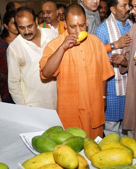 100 days: Yogi government counts its positives, Opposition the negatives