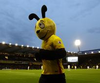 Premier League: Watford's mascot Harry the Hornet embroiled in row after 'mocking' Wilfried Zaha