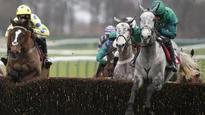 Haydock: Bristol De Mai wins Peter Marsh Chase as Alary pulled up