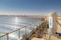 World Economic Forum Names GlassPoint Solar Technology Pioneer for 2016