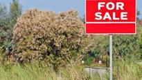 US town near Las Vegas up for sale for $ 8 million!