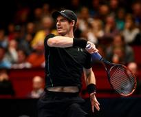 Andy Murray v David Ferrer, Vienna Erste Bank Open 2016 semi-final: Where to watch live, betting odds and live streaming information