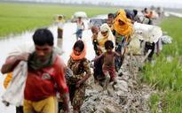 Rohingya Muslims aren't only ones fleeing Myanmar genocide, over 500 Hindus cross over to Bangladesh