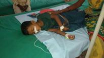 Japanese Encephalitis death toll touches 100 in Odisha's Malkangiri