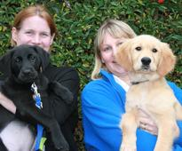 Lodders foundation provides guide dog boost