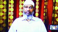 Will denounce Naik if proved guilty: Ummar Sullami