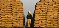 Food Grain Output Likely to Rise Marginally in FY16, Says Government