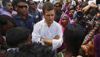 Rahul Gandhi finds fault with Rajasthan's flood rehabilitation work
