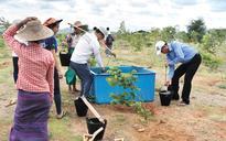 Korean project battles desertification in Myanmar