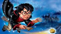 What Harry Potter can teach the working professionals