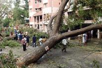 No electricity, no network, no money: Battered Tamil Nadu struggles post cyclone...