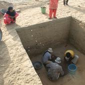 Early Indus Valley Farmers Grew Rice