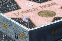 Border wall pops up around Donald Trump's star on Hollywood Walk of Fame - complete with barbed wire