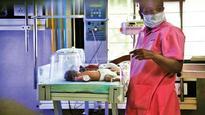 Nashik hospital blames infant deaths on trees