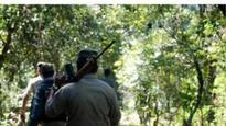Cops bust Naxal camp in Maharashtra-Chhattisgarh border