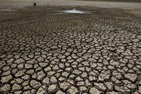 Over 3 lakh hectares in 15 districts of Odisha drought-hit