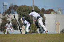 Community cricket