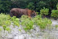 West Bengal tourism department to develop tourism hub at Gajaldoba
