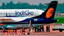 IndiGo write to Civil Aviation Minister on passenger assault