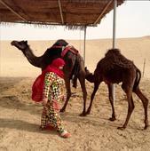 GCC Film Festival returns to Abu Dhabi with a focus on the region