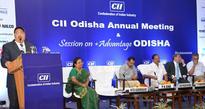Dr. Tapan Kumar Chand elected Chairman of CII , Odisha