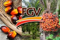 Felda has no plans to take FGV private